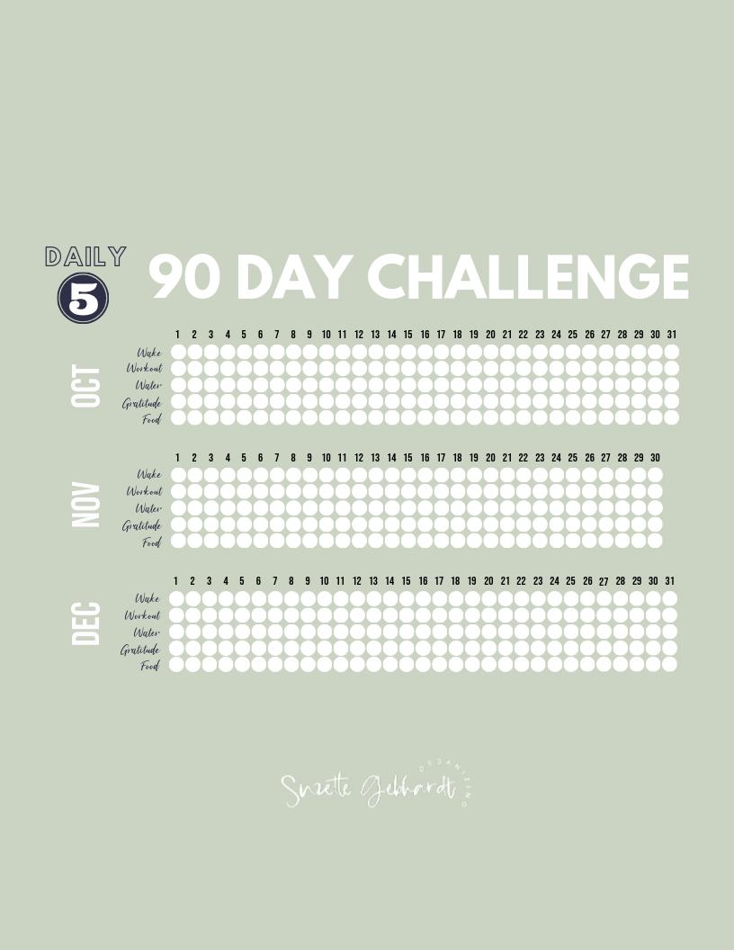 Last 90 Days Challenge: Free Printable Tracker